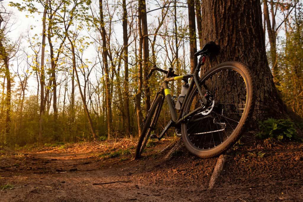 gravel bikes for different terrain