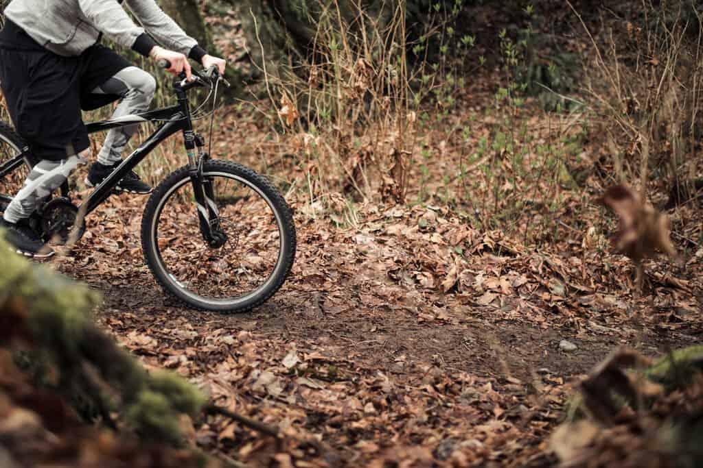 bikes for short riders