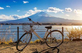 fuji bike brand