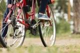 How Long Does a Bike Chain Last