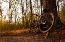 4 Best Gravel Bikes in 2020