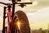 8 Best MTB Tires in 2020