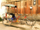 Best Tricycle for Adults with Disabilities in 2021