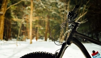 8 Best Women's Fat Tire Bikes in 2020